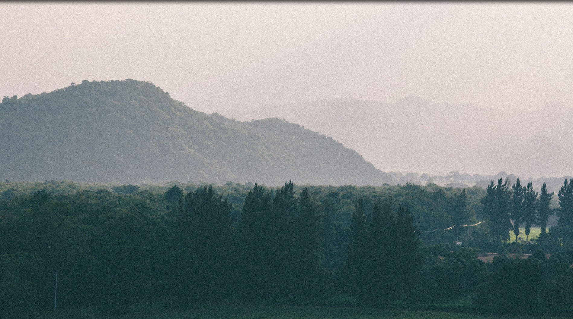 bonanza_banner_main_pic_02